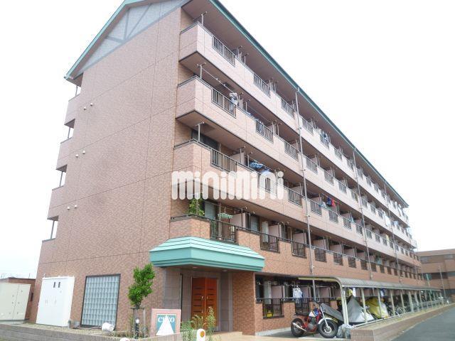 京葉線 舞浜駅(徒歩11分)