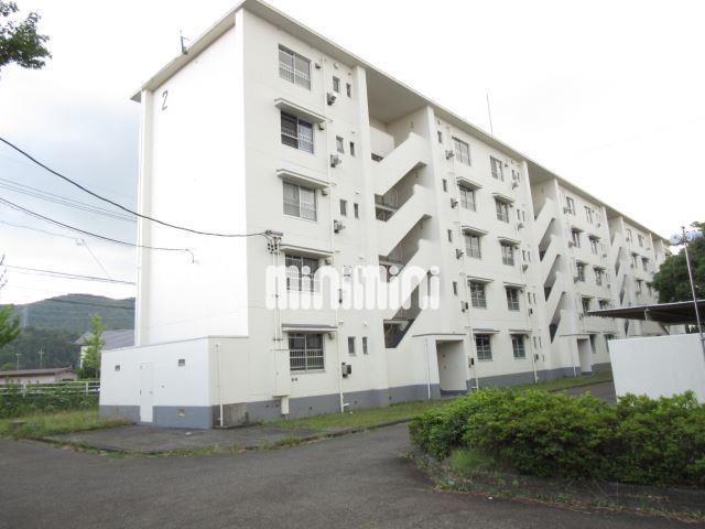 長良川鉄道 関富岡駅(徒歩67分)