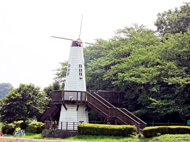 埼玉県のエリア情報1