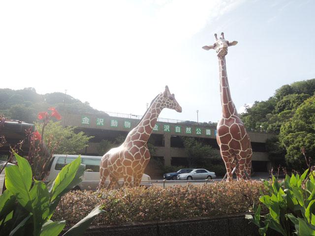 神奈川県のエリア情報7