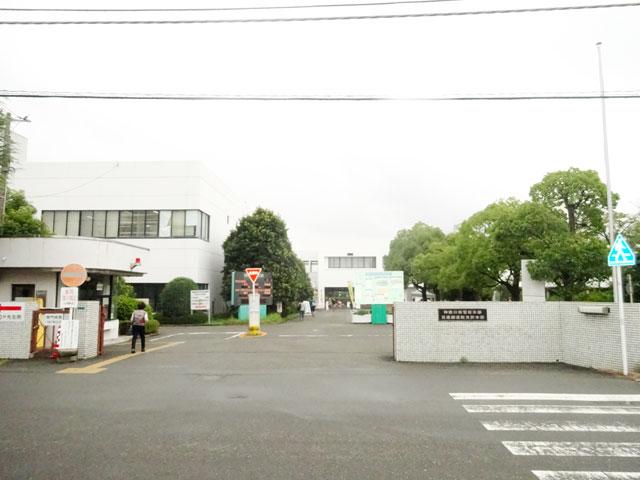 神奈川県のエリア情報4