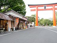 静岡県のエリア情報4