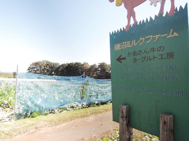 山田駅のエリア情報7