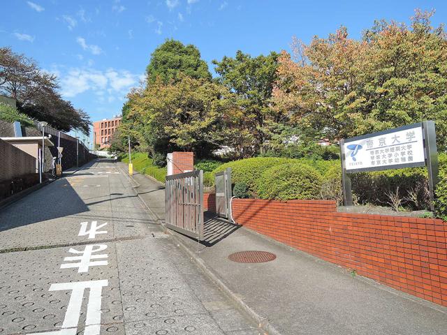 大塚・帝京大学駅のエリア情報4