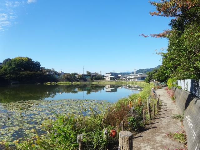 狐ヶ崎駅のエリア情報2