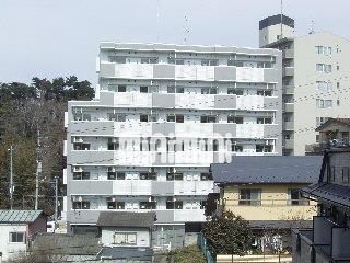 宮城県仙台市青葉区小松島2丁目1K