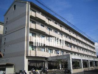 豊橋鉄道渥美線 南栄駅(徒歩10分)