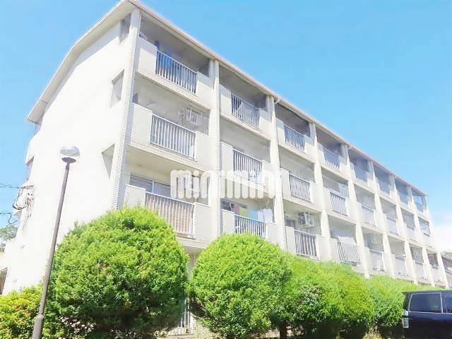 愛知県犬山市大字羽黒字桜海道2DK