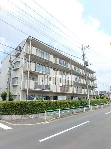 千代田・常磐緩行線 金町駅(徒歩20分)