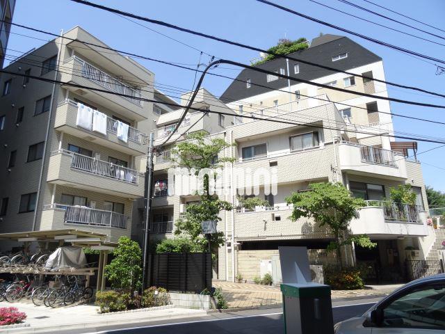 東京メトロ南北線 本駒込駅(徒歩17分)
