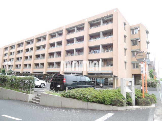 神奈川県川崎市多摩区中野島5丁目1DK