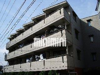 東急東横線 日吉駅(徒歩24分)