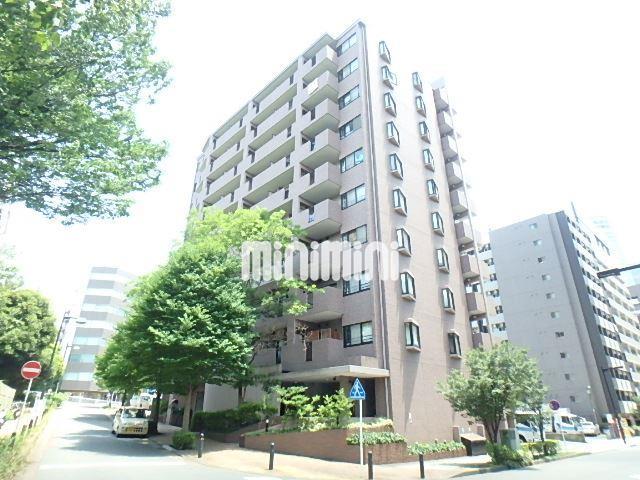 横浜市営地下鉄ブルーライン 新横浜駅(徒歩4分)