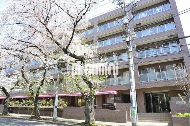 東急田園都市線 たまプラーザ駅(徒歩7分)