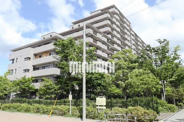 相模鉄道本線 和田町駅(徒歩10分)