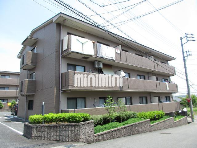 ディアコートSAKURADAI・B