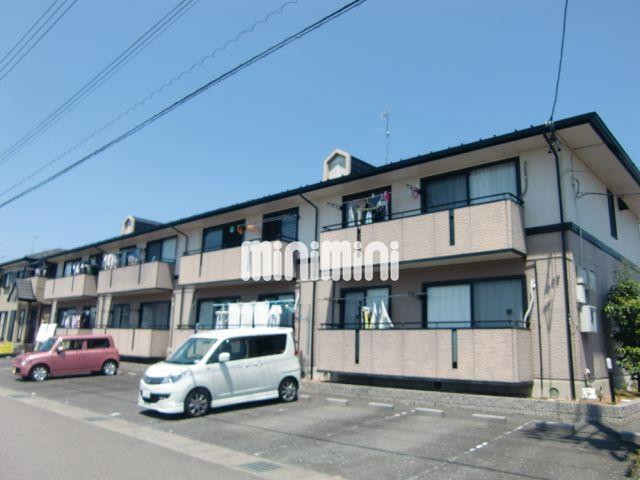 ハイカムールSUWA C