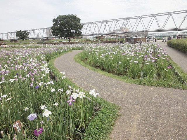 東京都のエリア情報12