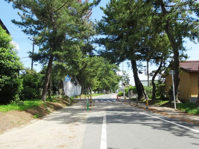 愛知県のエリア情報15