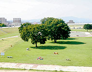 愛知県のエリア情報4
