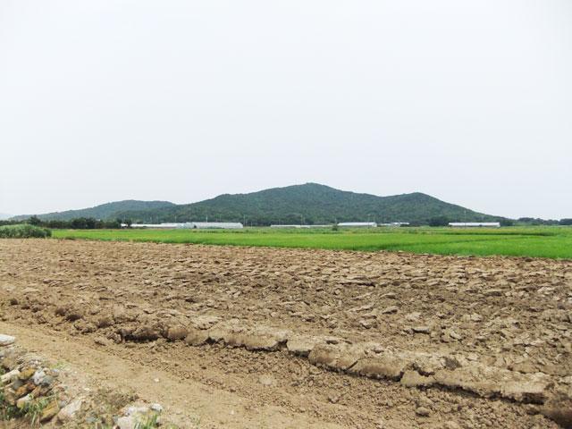 愛知県のエリア情報14