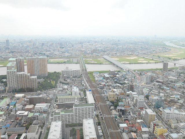 市川駅のエリア情報8