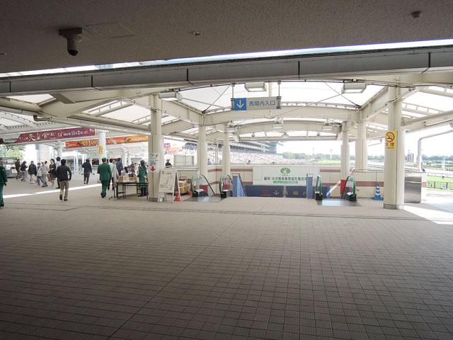 府中本町駅のエリア情報11