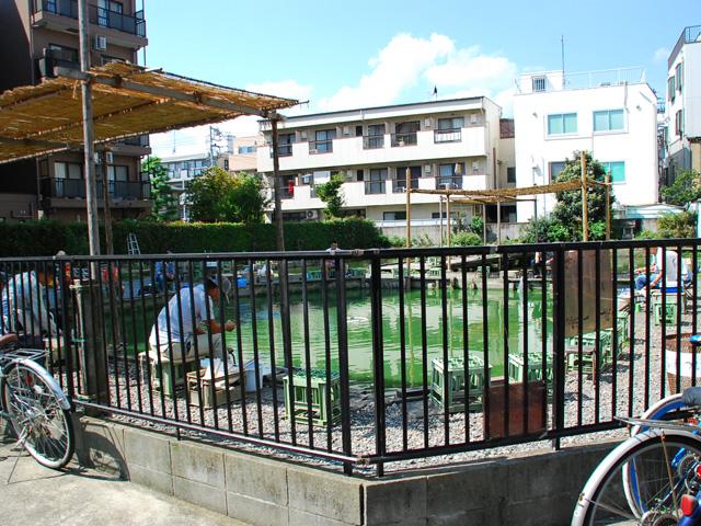 阿佐ヶ谷駅のエリア情報6