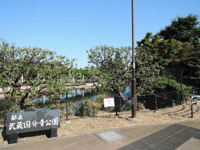 西国分寺駅のエリア情報9