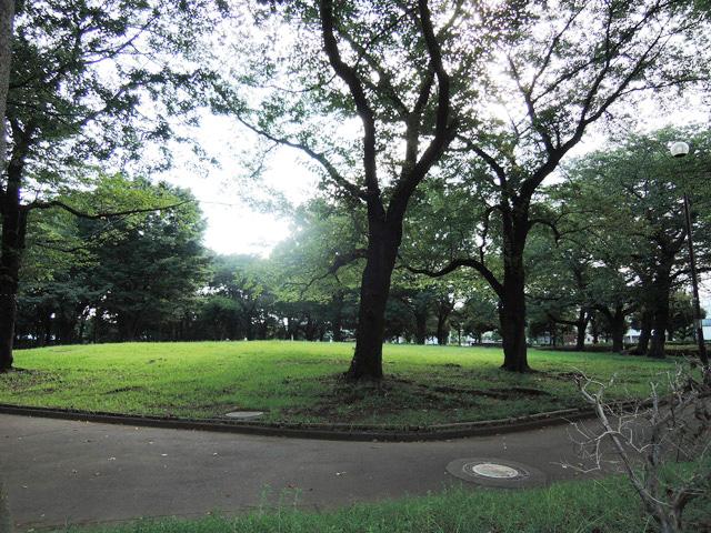 日野駅のエリア情報5