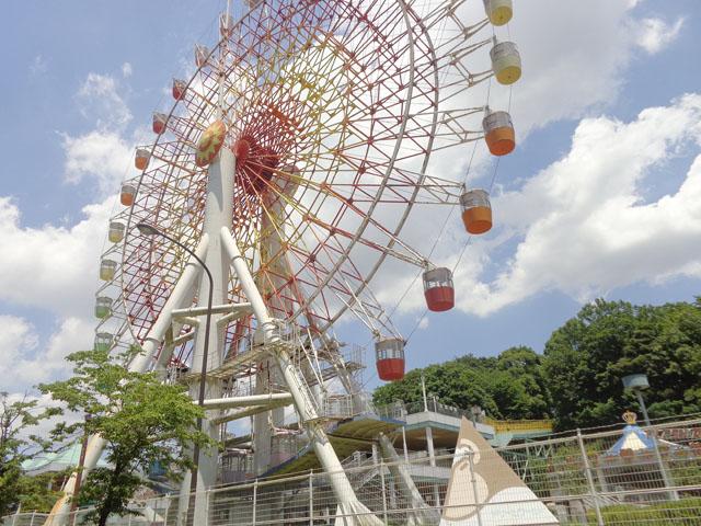 動物公園駅のエリア情報6