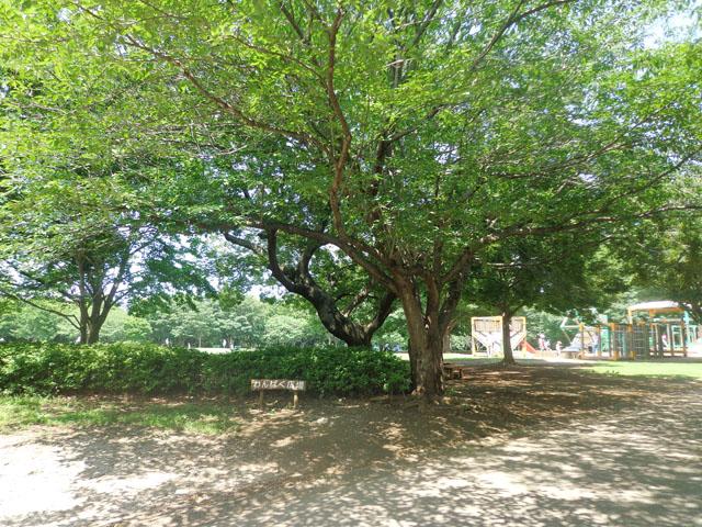 千葉寺駅のエリア情報16