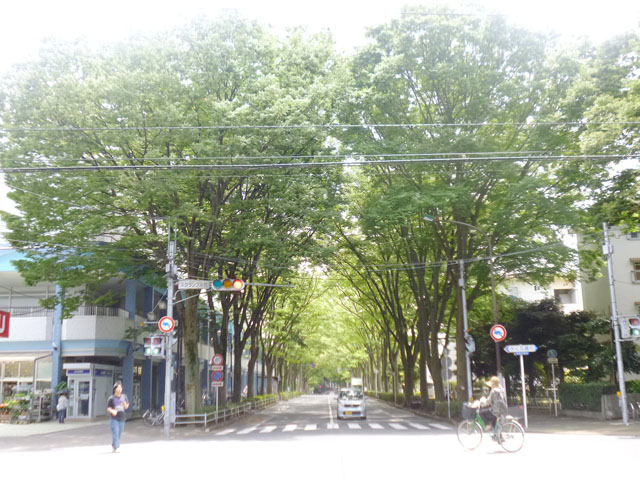 常盤平駅のエリア情報5