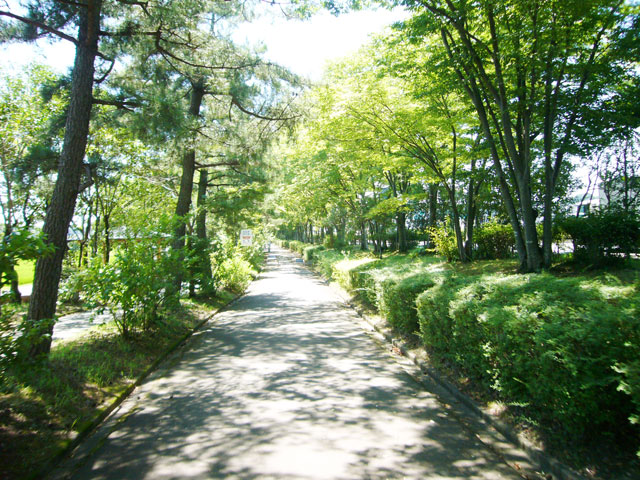 森林公園駅のエリア情報4