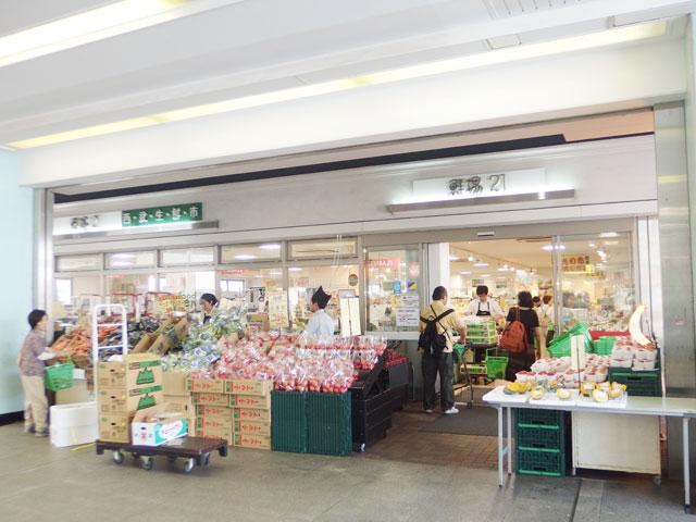 富士見台駅のエリア情報15