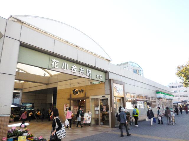 花小金井駅のエリア情報2