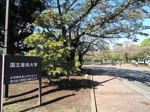 玉川上水駅のエリア情報3