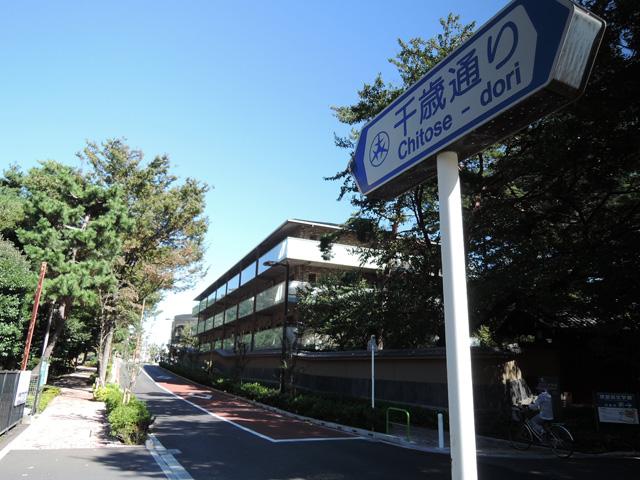 芦花公園駅のエリア情報5