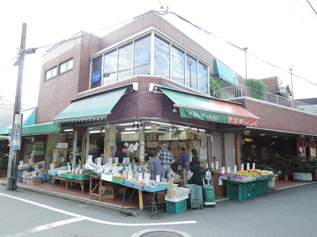 柴崎駅のエリア情報3