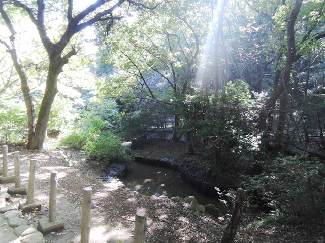 平山城址公園駅のエリア情報10