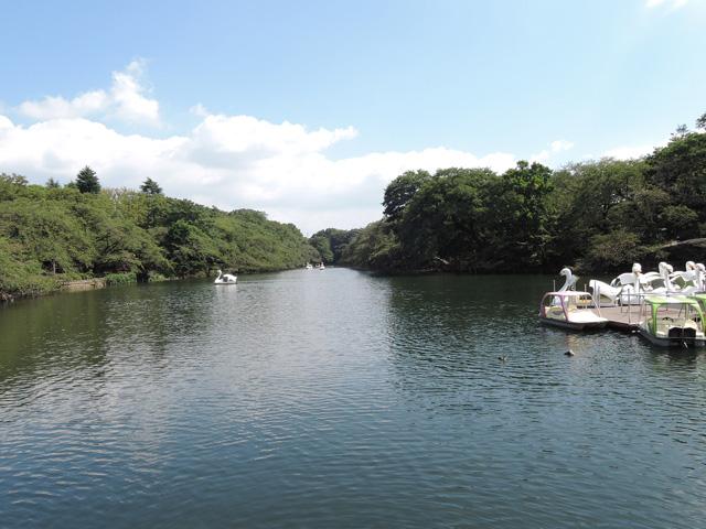 吉祥寺駅のエリア情報9