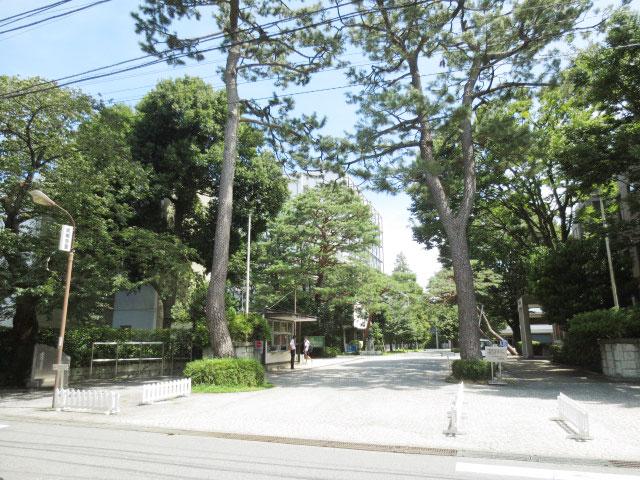 成城学園前駅のエリア情報4