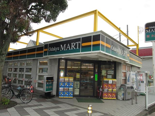 愛甲石田駅のエリア情報5
