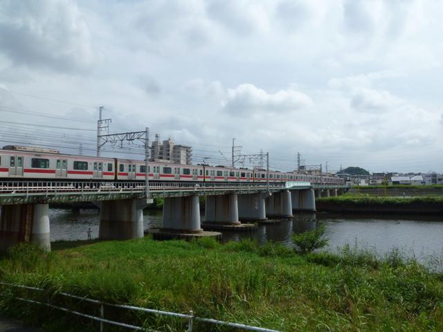 綱島駅のエリア情報6