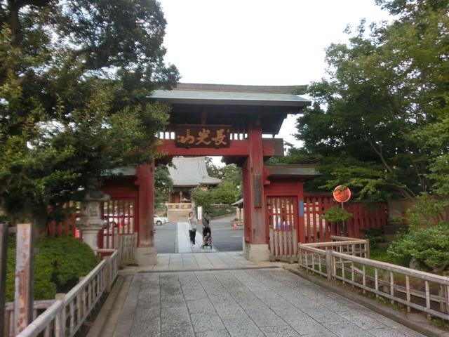 妙蓮寺駅のエリア情報4