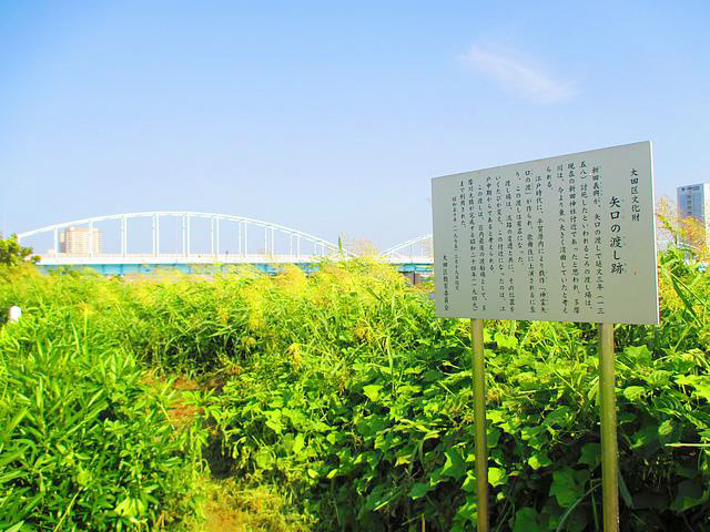 矢口渡駅のエリア情報6