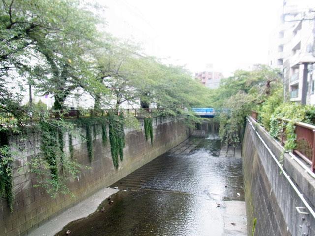 池尻大橋駅のエリア情報4