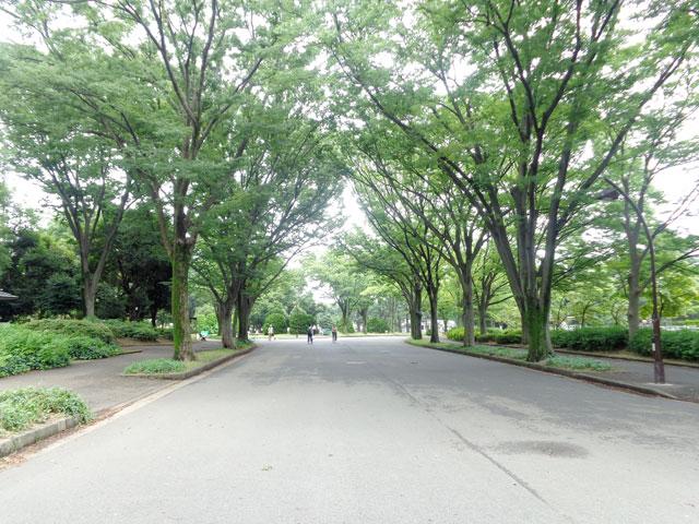 駒沢大学駅のエリア情報2