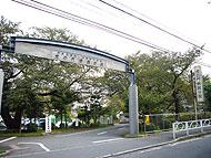 宮崎台駅のエリア情報7