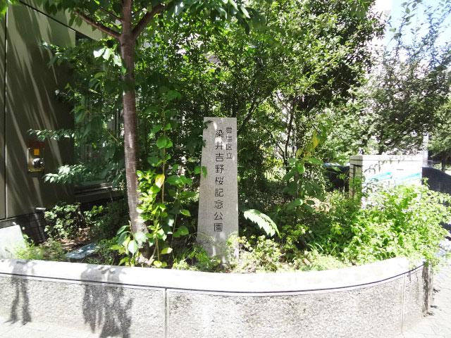 駒込駅のエリア情報4